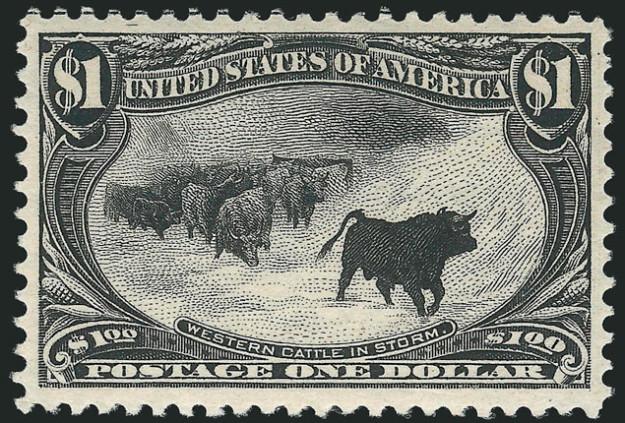 slide4-buffalo